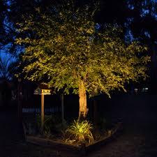 landscape tree lights landscape lighting ideas