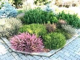 Shrub Garden Ideas Garden Shrubs Pictures Facts Garden Flowering Shrubs
