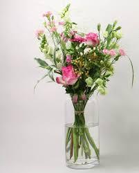 Plant Vase Chrysal Flower U0026 Plant Care