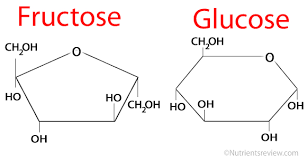 fructose malabsorption low fructose diet