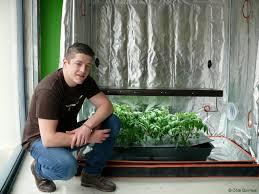 chambre de culture interieur tout pour jardiner en intérieur actu fr