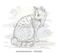 vector watercolor cats download free vector art stock graphics