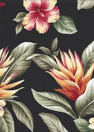 Upholstery Fabric Hawaii 23 Best Barkcloth Images On Pinterest Floral Prints Prints And