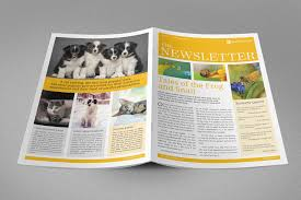 newsletter indesign template 6 indesign free templates