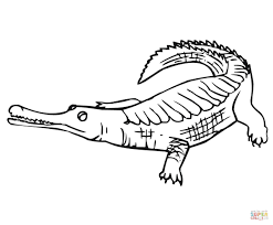 alligator coloring pages coloring pages animals gharial coloring page crocodile coloring