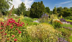 alan titchmarsh on planting rock plants garden life u0026 style