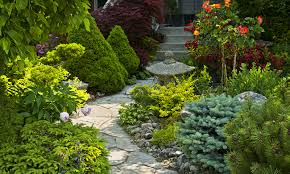 Landscape Design Books by Corea Landscaping U0026 Design