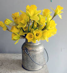 How To Revive Flowers In A Vase How To Care For Cut Daffodils First Come Flowers