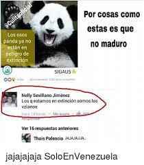 25 best memes about panda international and espanol panda