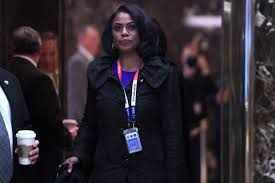 curriculum vitae template journalist shooting hoax proof of employment journalist says omarosa threatened her has dossier on her