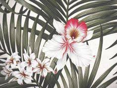 Upholstery Fabric Hawaii Palm Leaf Tropical Fabric Orchids Upholstery Hawaii This High