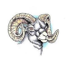 zodiac goat head aries tattoo design for men