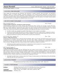 Senior Programmer Resume Resume Web Programmer Resume