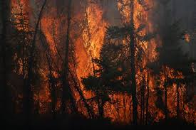 Largest Wildfire In Alberta History by Fort Mcmurray Fire What U0027s Happening Now And What You U0027ve Missed