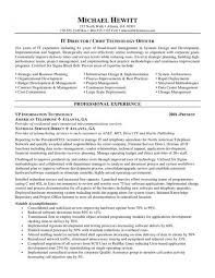 Resume Examples Healthcare by It Director Resume Samples Template Examples