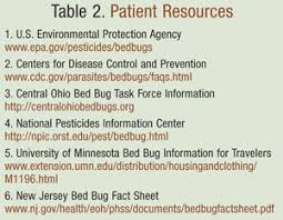 remedies for bed bug bites the rise in bed bugs prevention management and treatment