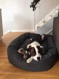 Foam Dog Bed Dog Beds Pet Bed Lifetime Guarantee Usa