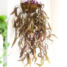 online buy wholesale artificial hanging plants indoor from china