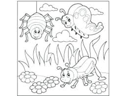 preschool coloring pages bugs bug coloring pages coloring pages insects best bug coloring pages