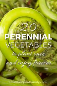 Types Of Vegetable Gardening by 20 Perennial Vegetables To Plant For Years Of Bounty Small