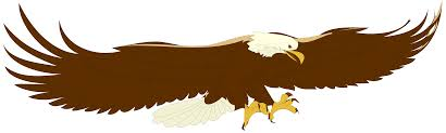 golden eagle clipart eagle bird pencil and in color golden eagle