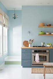 Best Type Of Paint For Kitchen Cabinets by Kitchen Astounding What Kind Of Paint For Kitchen Cabinets Paint