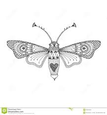 butterfly moth black hand drawn outline delicate coloring