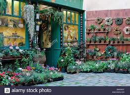 florist shop republic prague lesser town flower shop commerce europe