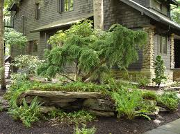 backyard natural landscaping ideas natural landscaping ideas
