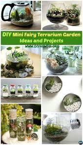 indoor small garden design 10 diy mini fairy terrarium garden