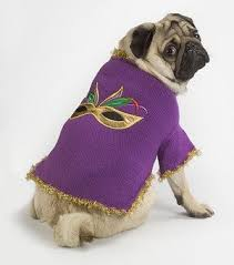 mardi gras sweater mardi gras sweater buy dog sweater product on alibaba