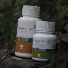 cod obat kuat tiens bandung paket muncord zinc capsule harga