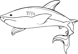underwater shark coloring page wecoloringpage