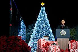 christmas trees the new york times