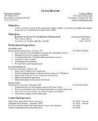 resume profile exles amazing resume profile exles for high school students
