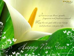 greetings for new year greetings for happy new year hd wallpapers pulse