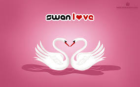 feb 14 valentines day wallpapers valentines day wallpaper u2013 download latest hd valentine wallpaper