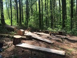 Firepit Swing by Backyard Features Treehouses Carolina Tree Monkeys
