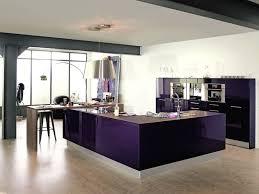 cuisine pourpre cuisine violette pas cher sur cuisine lareduc com