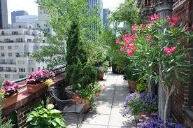 rooftop flower garden write teens