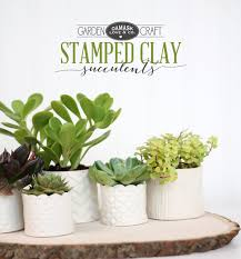diy succulent diy sted clay succulent pots damask love the inspired room