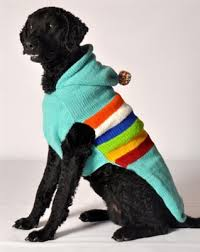 turquoise ski handmade sweaters sweaters for dogs