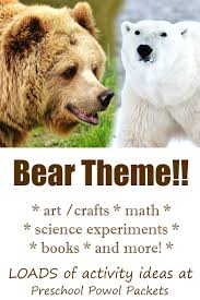 bear theme activities for preschoolers preschool powol packets