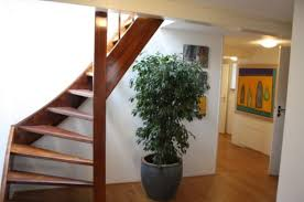Wooden Spiral Stairs Design Spiral Staircase Terraced House Staircase Gallery