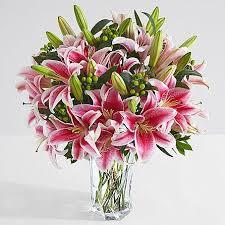 stargazer bouquet premium fragrant stargazer lilies
