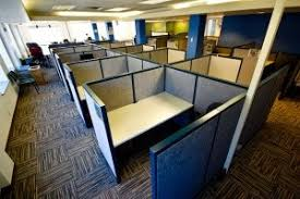 What Plants Are Cubicle Friendly by How To Make An Office Cubicle Less Depressing Quora
