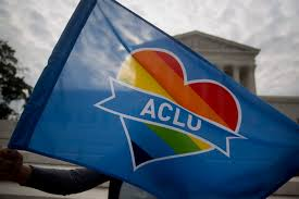 Rainbow Us Flag Aclu Joins Y Combinator U2014where Peter Thiel Is A Partner Fortune