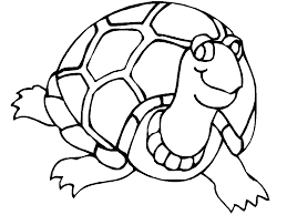turtle coloring pages coloring books 669 unknown