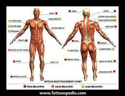 tattoo pain level chart female tattoo pain chart female back 1000 geometric tattoos ideas