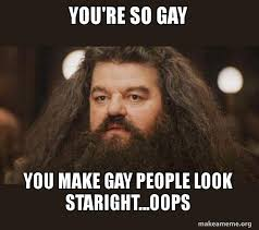 you re so gay you make gay people look staright oops hagrid i